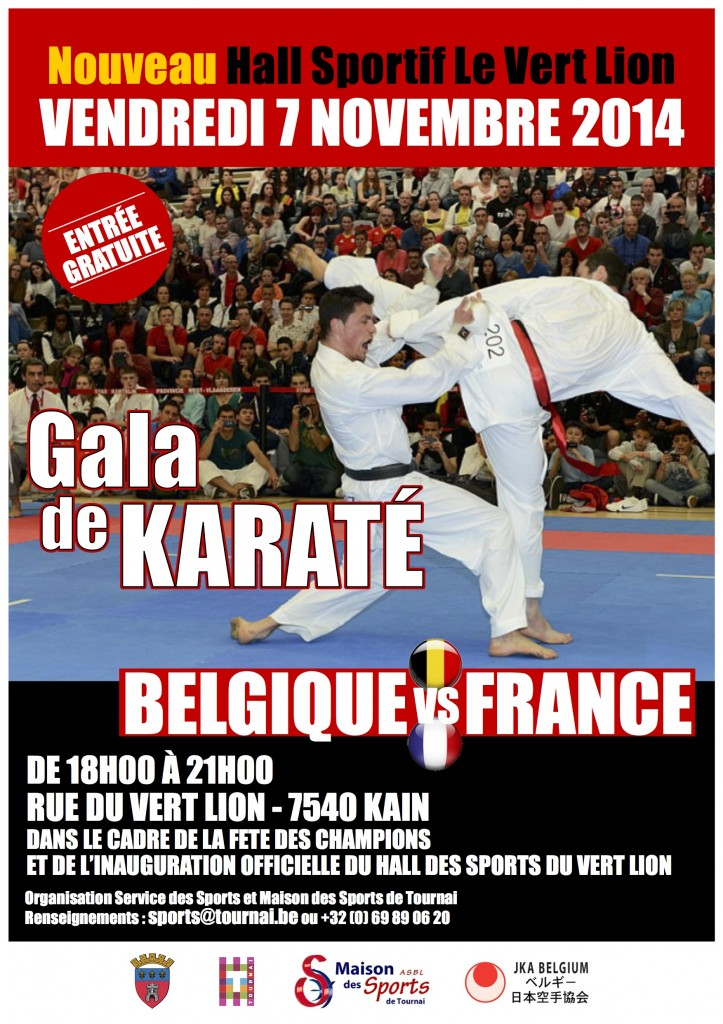 Affiche karaté 2014 version finale