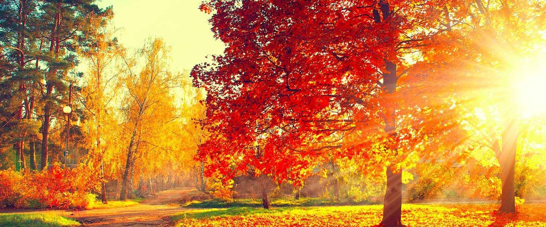 op-vakantie-in-de-herfst